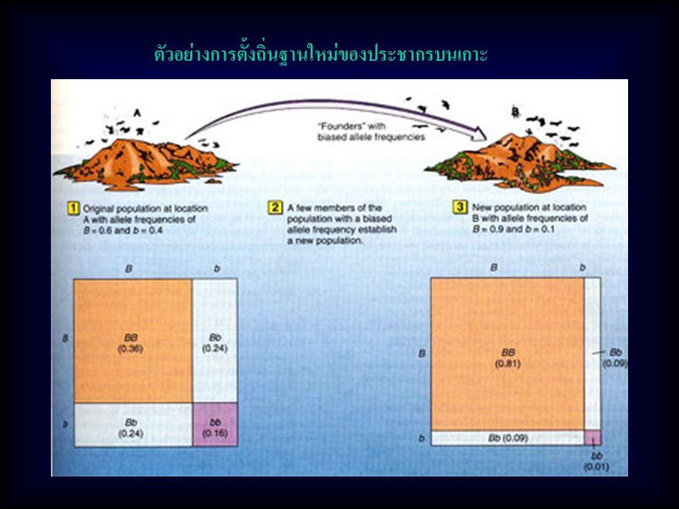 ตัวอย่างการตั้งถิ่นฐานใหม่ของประชากรบนเกาะ