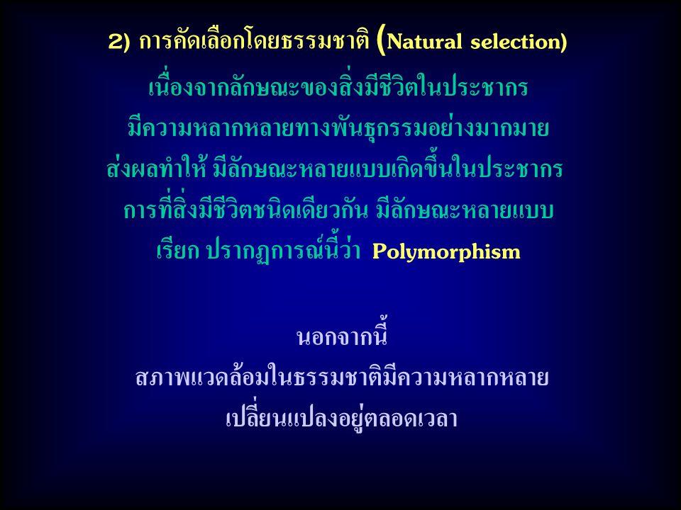2) การคัดเลือกโดยธรรมชาติ (Natural selection)