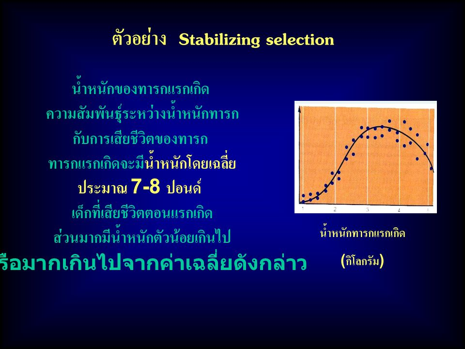ตัวอย่าง Stabilizing selection