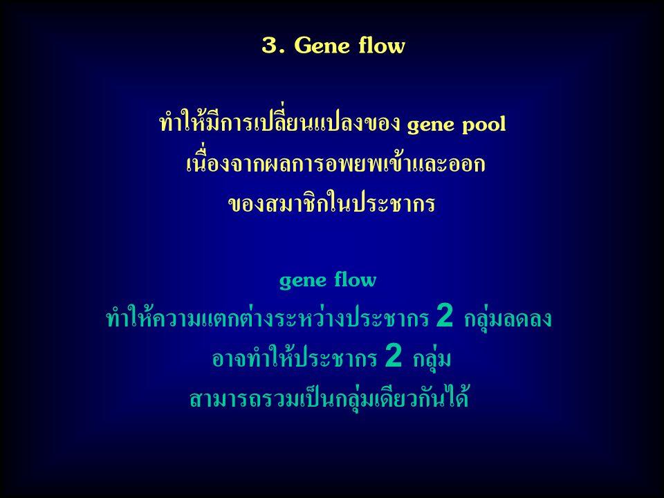 3. Gene flow ทำให้มีการเปลี่ยนแปลงของ gene pool