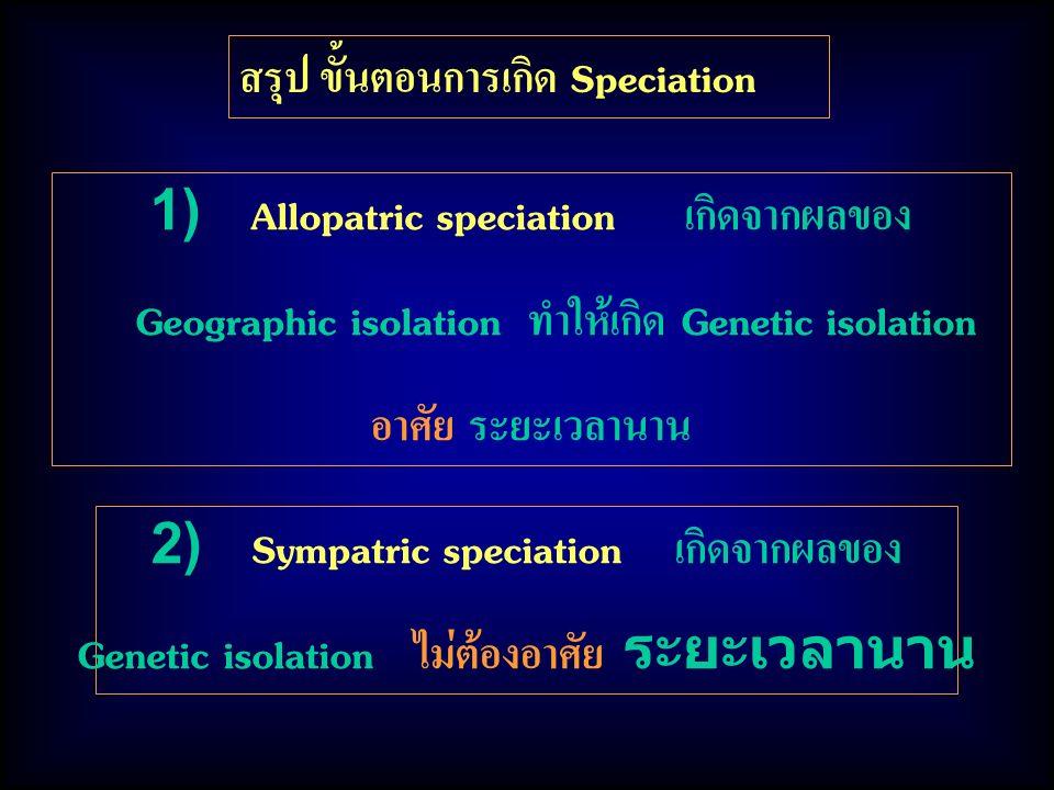 สรุป ขั้นตอนการเกิด Speciation