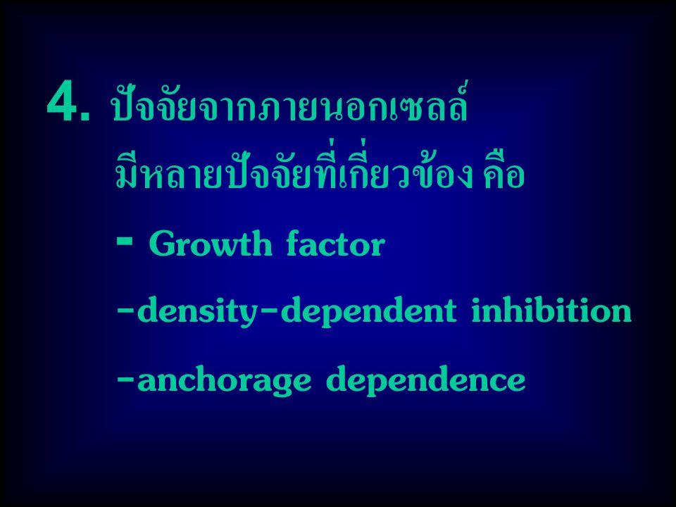 4. ปัจจัยจากภายนอกเซลล์