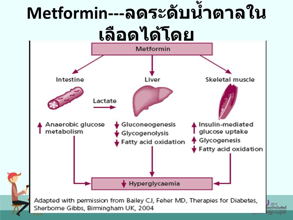 Metformin---ลดระดับน้ำตาลในเลือดได้โดย
