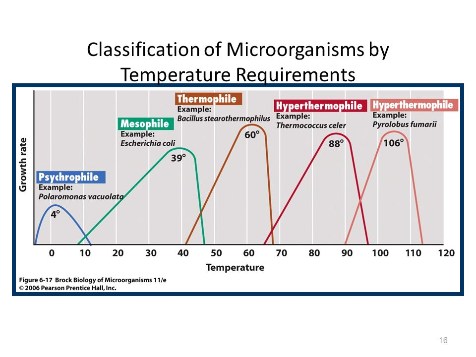 Classification of Microorganisms by Temperature Requirements