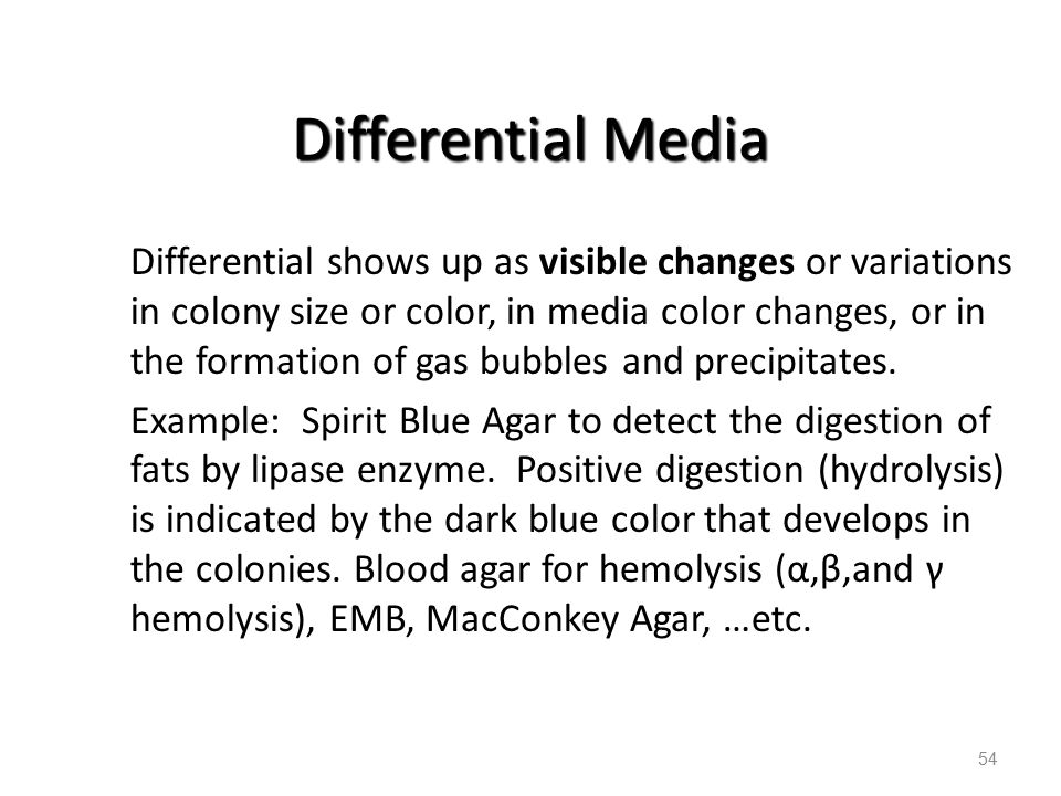 Differential Media