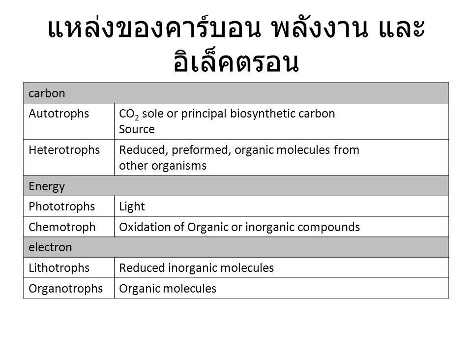แหล่งของคาร์บอน พลังงาน และ อิเล็คตรอน