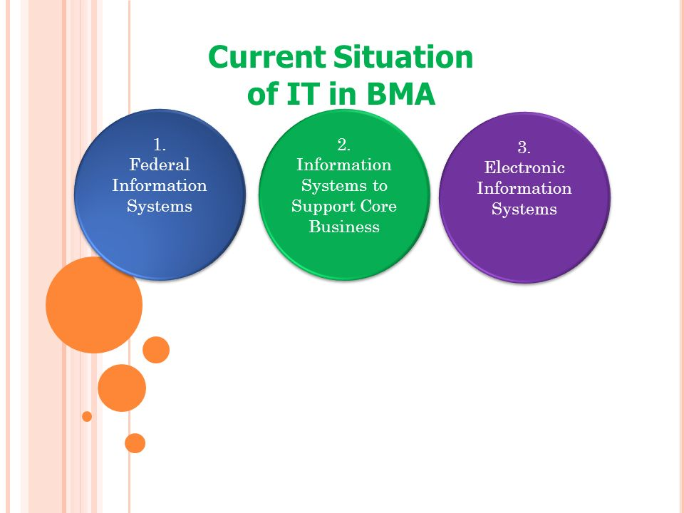 Current Situation of IT in BMA