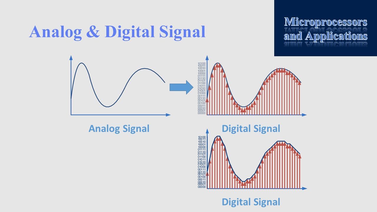 Analog & Digital Signal