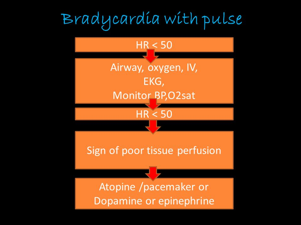 Bradycardia with pulse