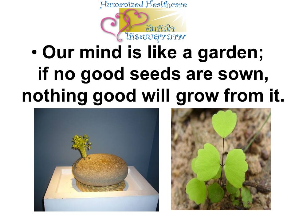 Our mind is like a garden; if no good seeds are sown, nothing good will grow from it.