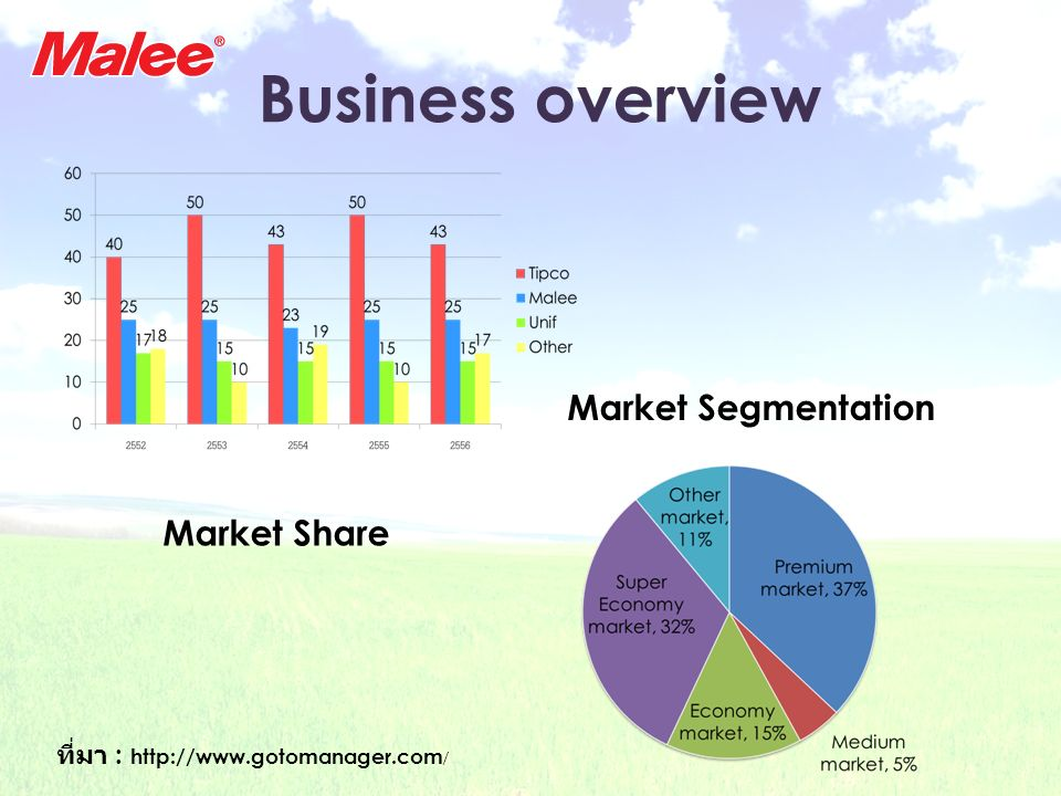 Business overview Market Segmentation Market Share