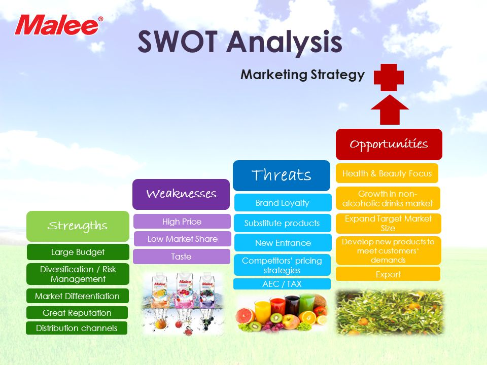 SWOT Analysis Threats Marketing Strategy Opportunities Weaknesses