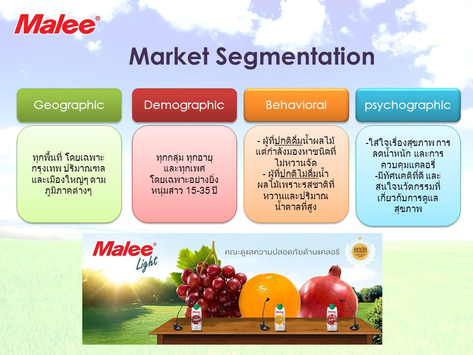 Market Segmentation Geographic Demographic Behavioral psychographic