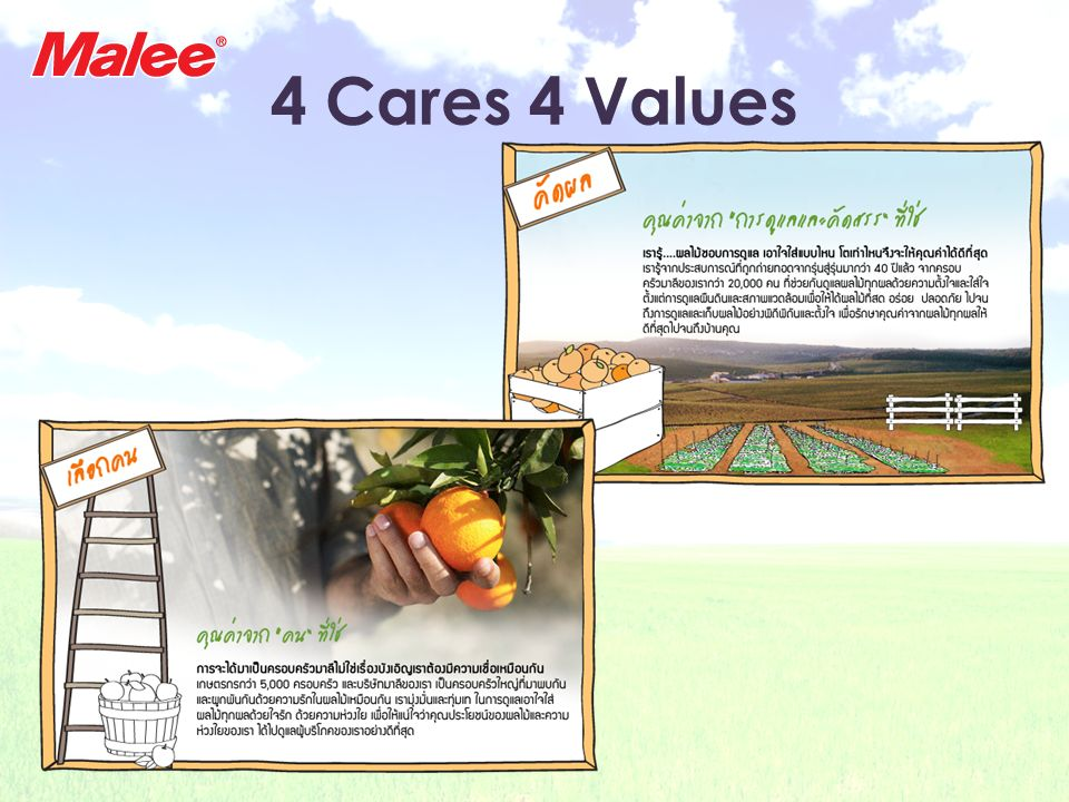 4 Cares 4 Values