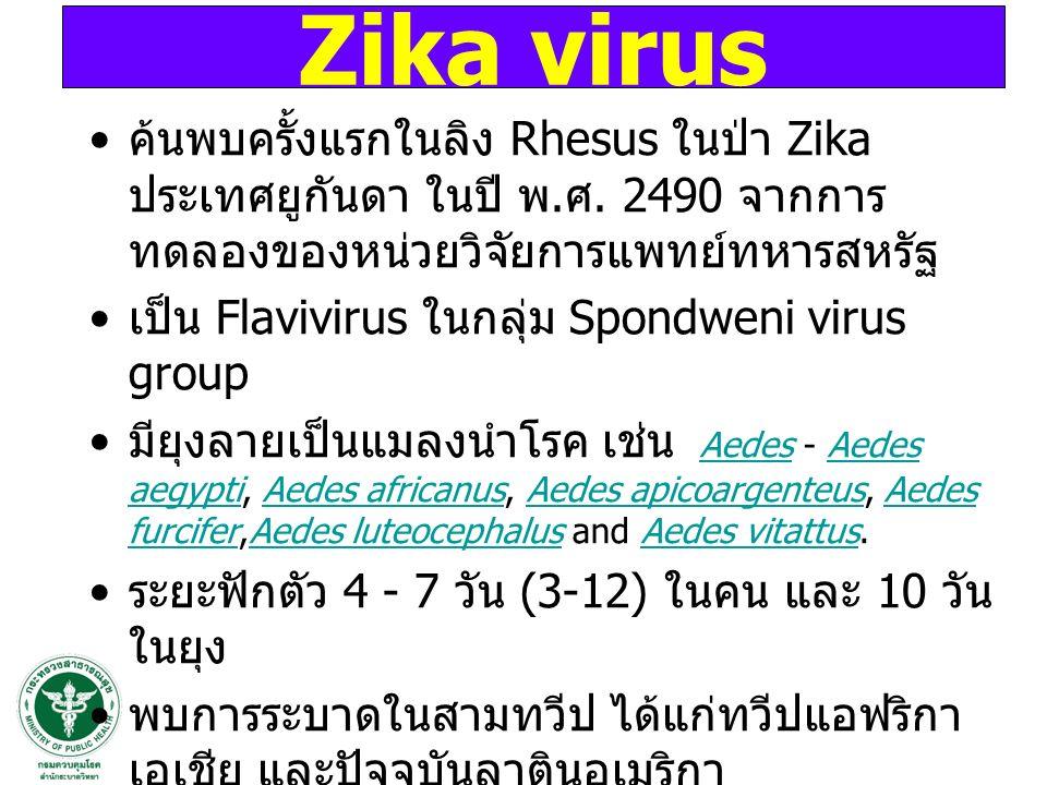 Zika virus ค้นพบครั้งแรกในลิง Rhesus ในป่า Zika ประเทศยูกันดา ในปี พ.ศ. 2490 จากการทดลองของหน่วยวิจัยการแพทย์ทหารสหรัฐ.
