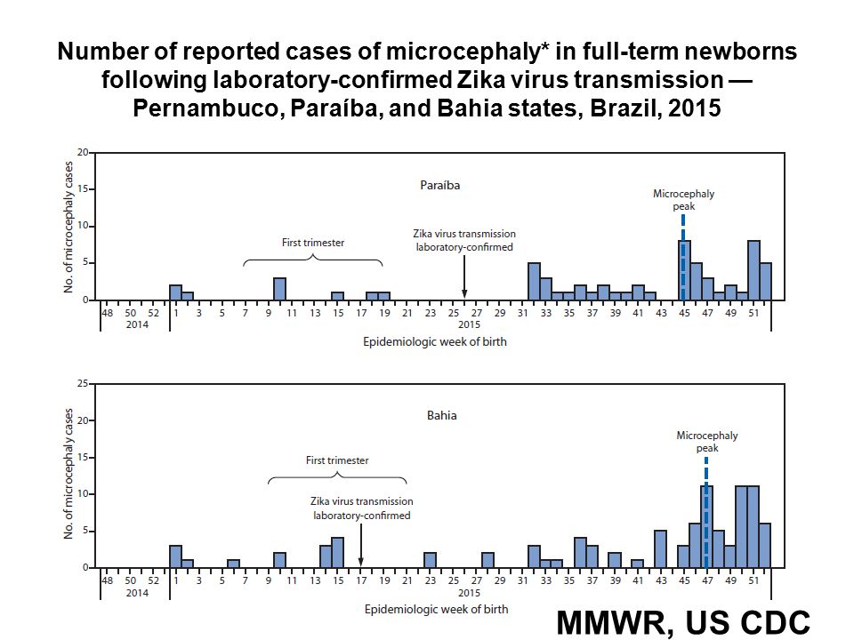 Number of reported cases of microcephaly