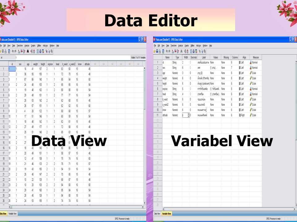 Data Editor Data View Variabel View