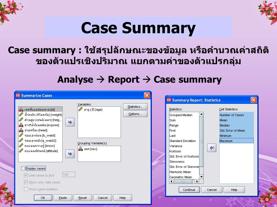 Analyse  Report  Case summary