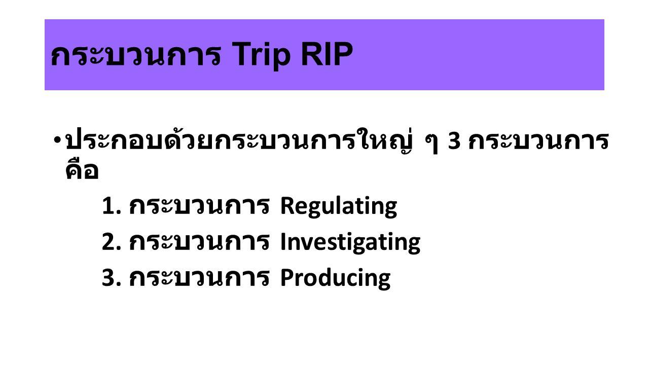 กระบวนการ Trip RIP ประกอบด้วยกระบวนการใหญ่ ๆ 3 กระบวนการ คือ