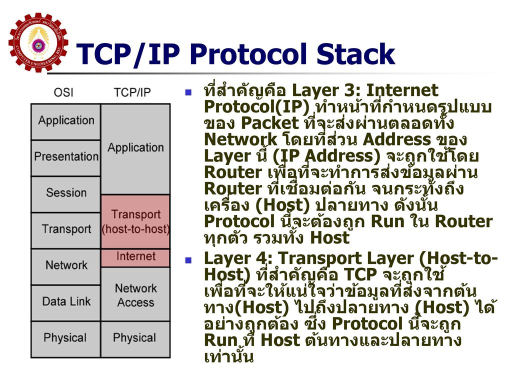 TCP/IP Protocol Stack