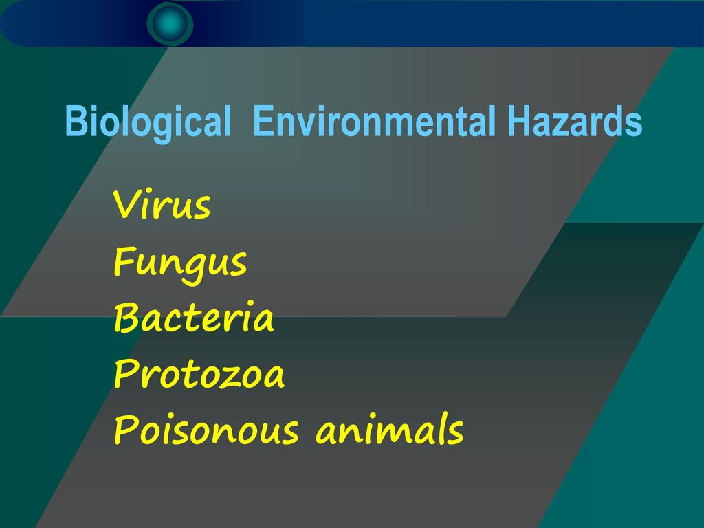 Biological Environmental Hazards