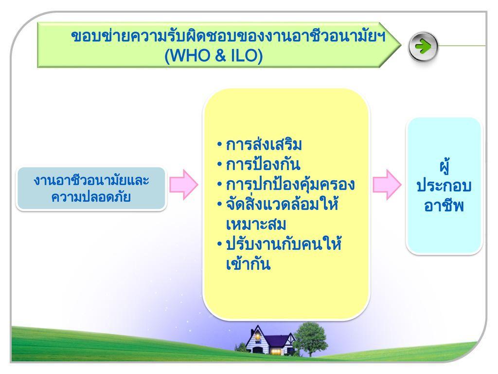 (WHO & ILO) ผู้ประกอบอาชีพ
