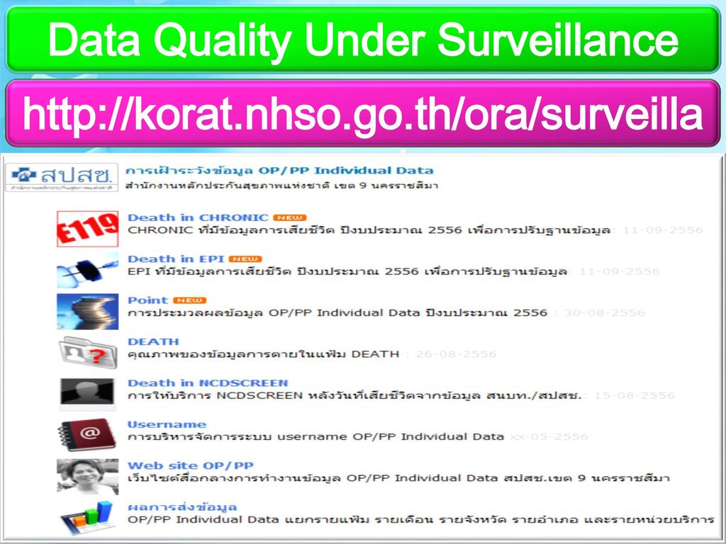 Data Quality Under Surveillance
