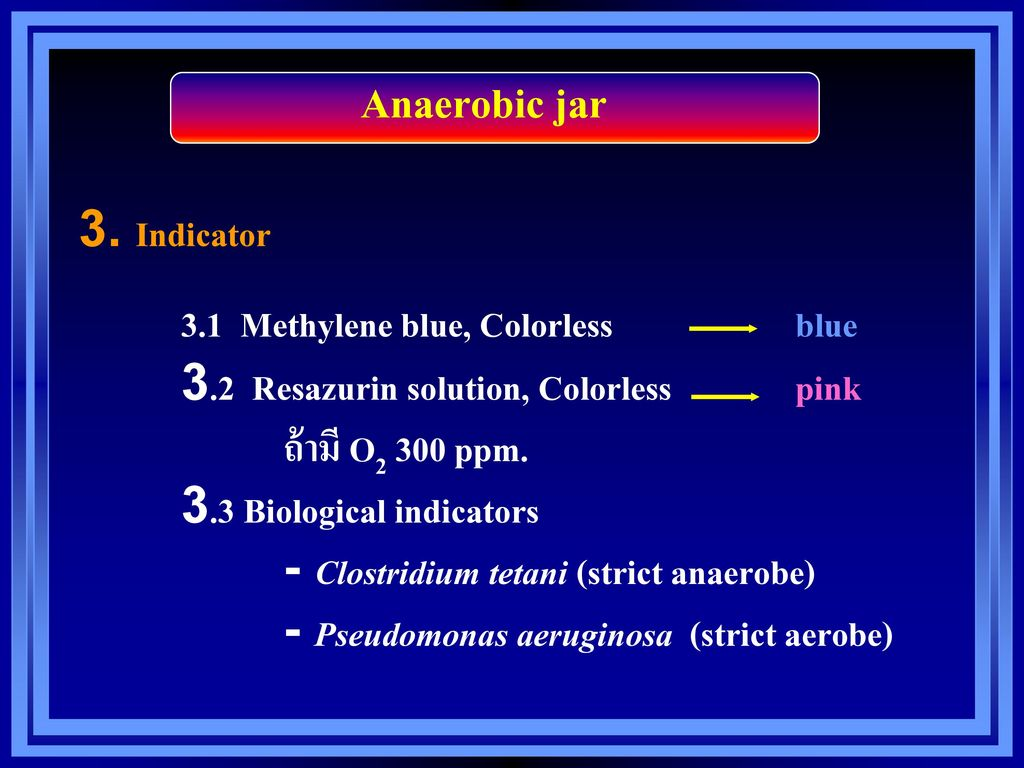 Anaerobic jar 3. Indicator