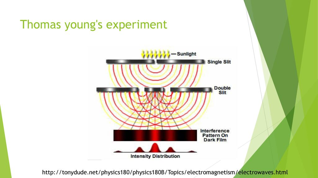 Thomas young s experiment