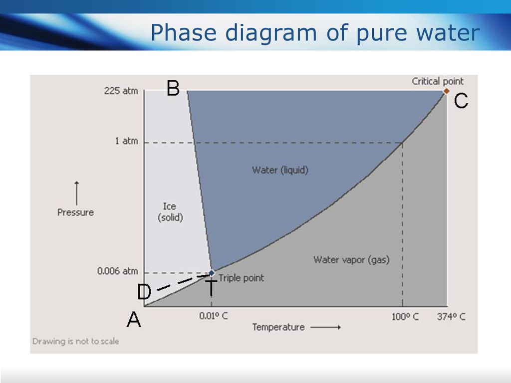 Phase diagram of pure water