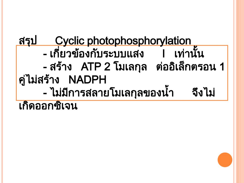 สรุป Cyclic photophosphorylation