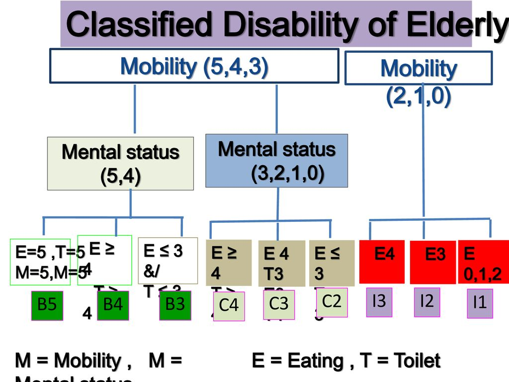 Classified Disability of Elderly by TAI