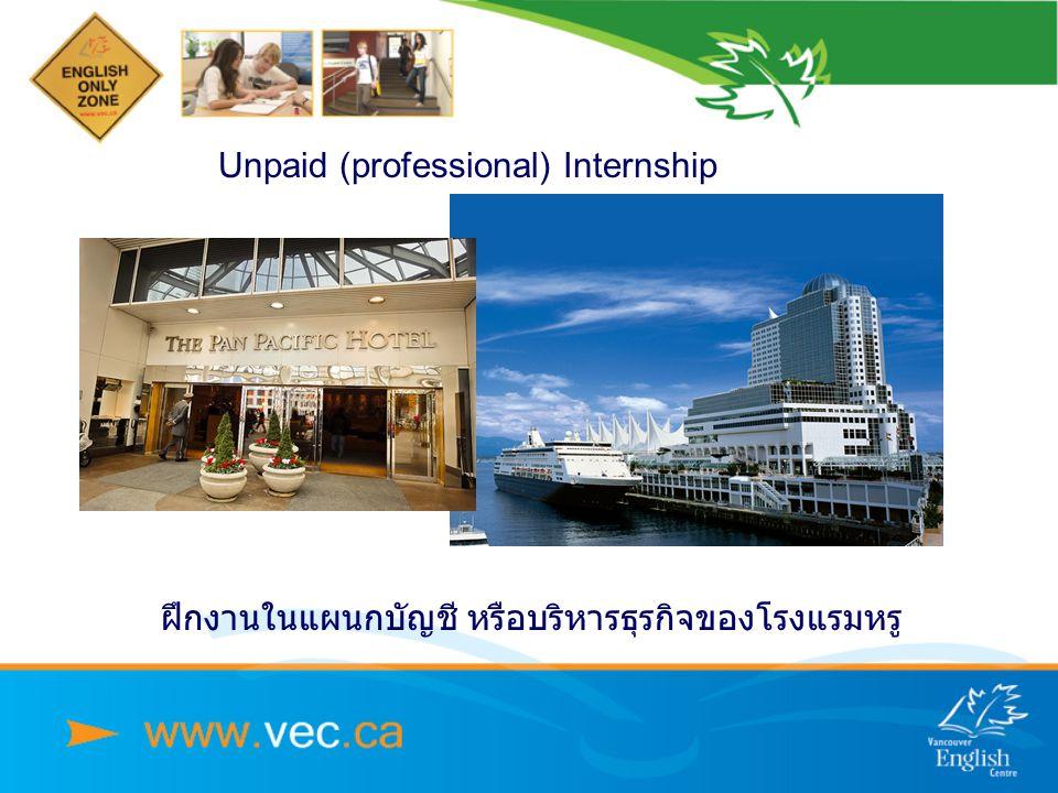 Unpaid (professional) Internship