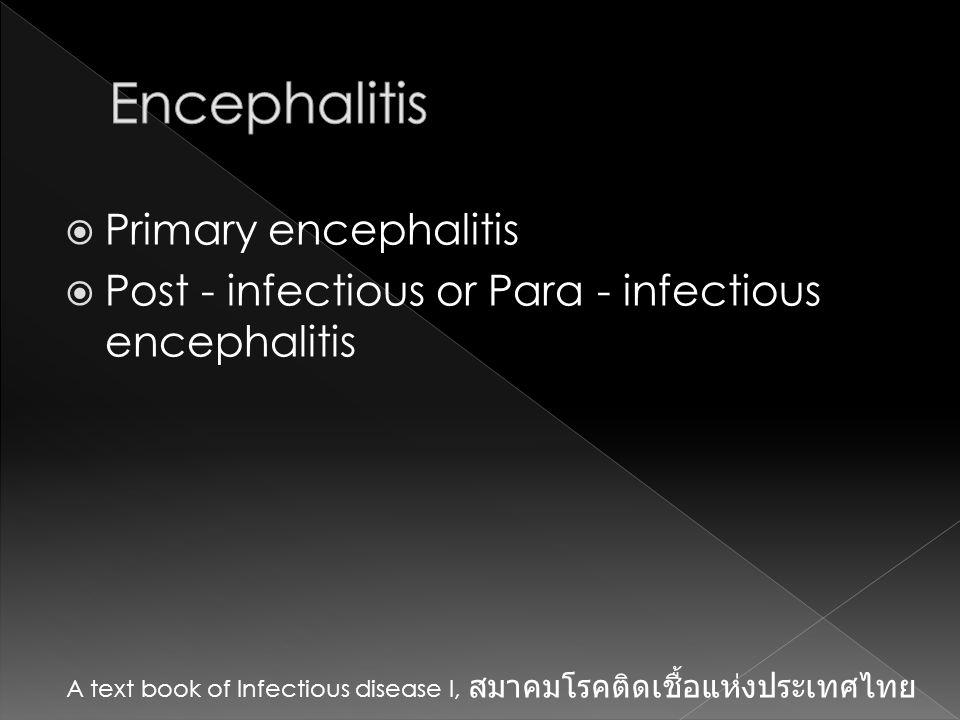 Encephalitis Primary encephalitis