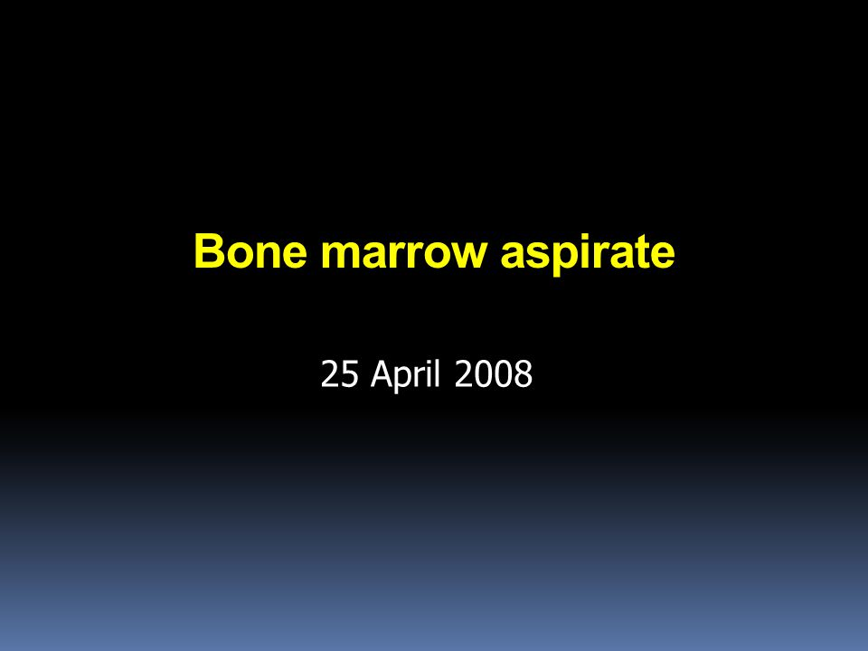 Bone marrow aspirate 25 April 2008
