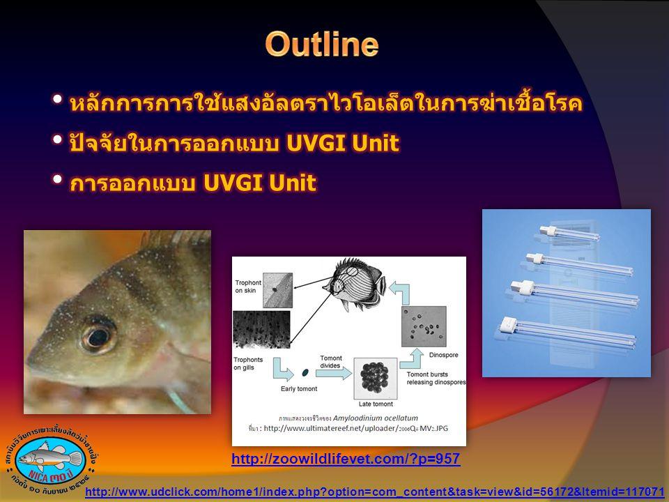 Outline หลักการการใช้แสงอัลตราไวโอเล็ตในการฆ่าเชื้อโรค