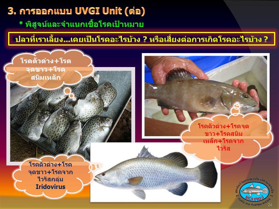 3. การออกแบบ UVGI Unit (ต่อ)