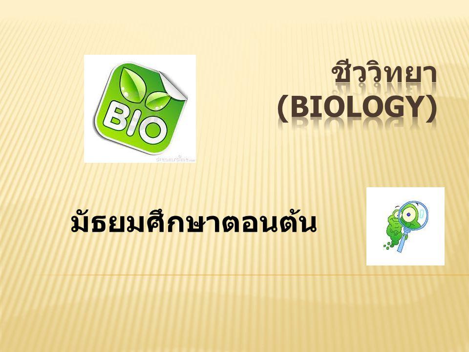 ชีววิทยา (Biology) มัธยมศึกษาตอนต้น