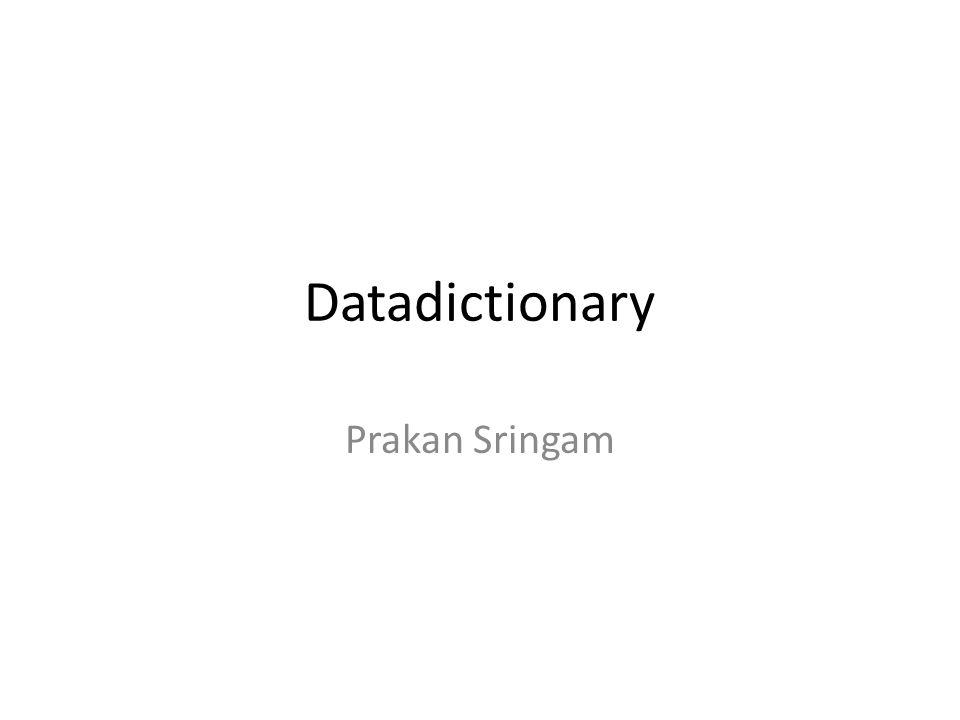 Datadictionary Prakan Sringam