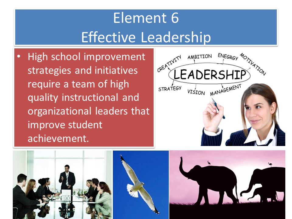 Element 6 Effective Leadership
