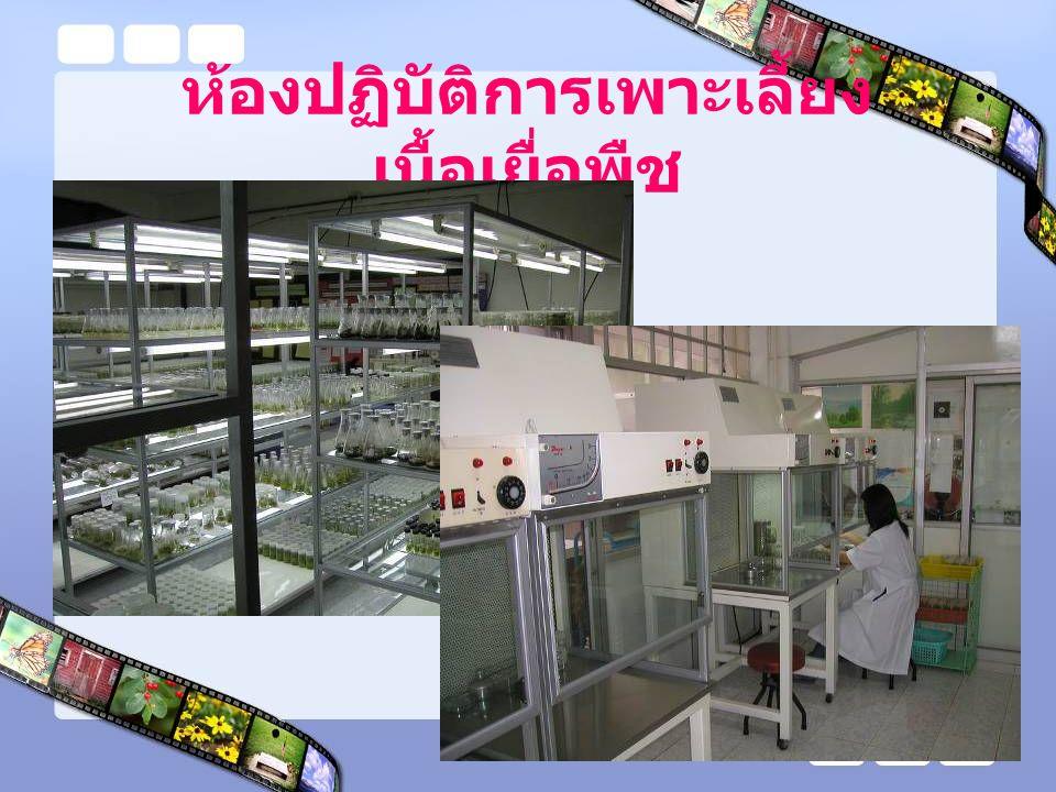 ห้องปฏิบัติการเพาะเลี้ยงเนื้อเยื่อพืช