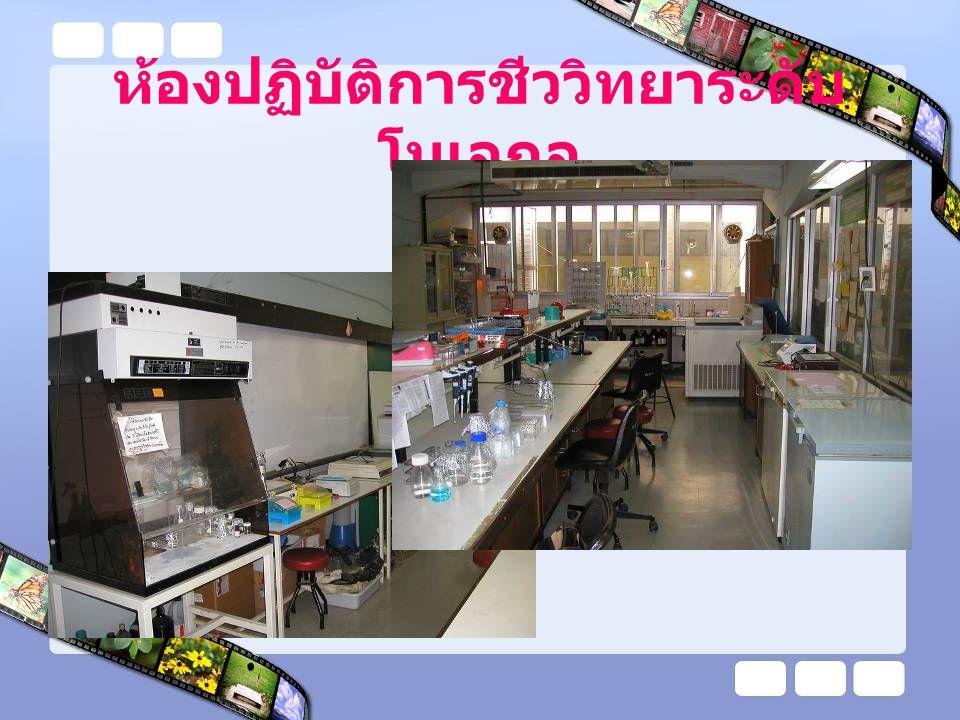 ห้องปฏิบัติการชีววิทยาระดับโมเลกุล