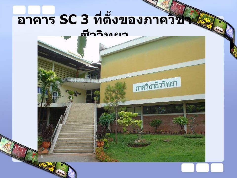 อาคาร SC 3 ที่ตั้งของภาควิชาชีววิทยา