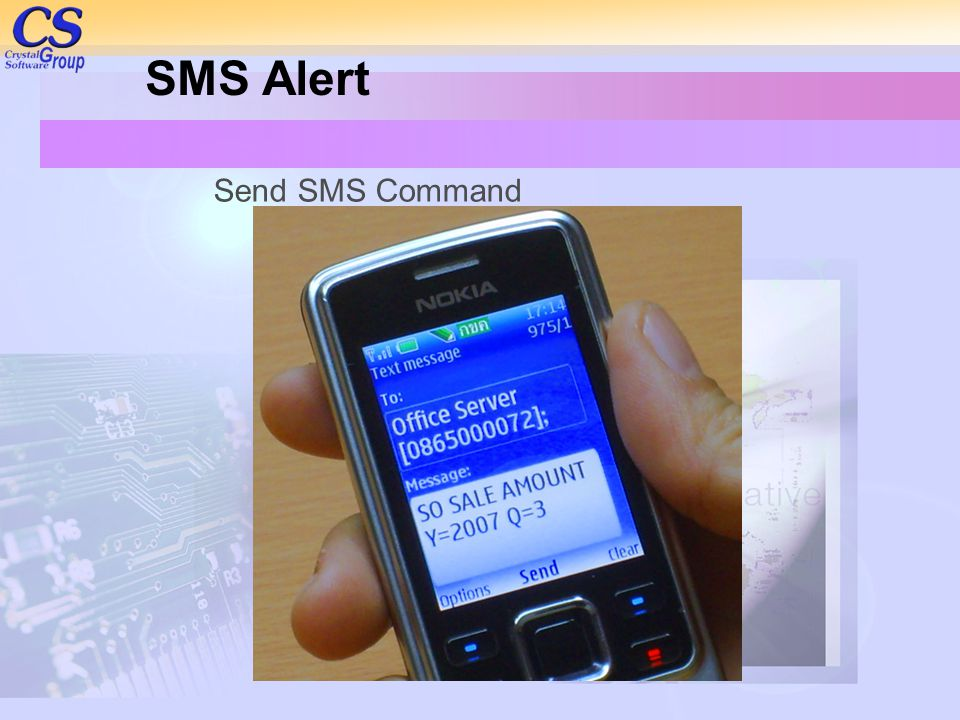 SMS Alert Send SMS Command
