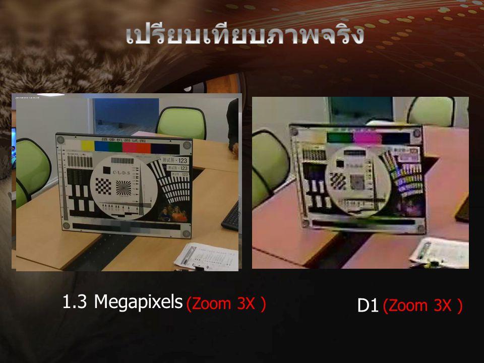 เปรียบเทียบภาพจริง 1.3 Megapixels (Zoom 3X ) (Zoom 3X ) D1