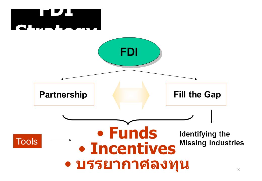 FDI Strategy Funds Incentives บรรยากาศลงทุน FDI Tools Partnership