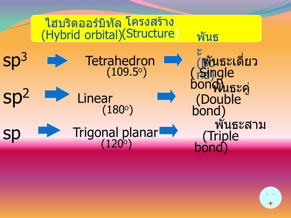 sp2 sp3 sp Linear พันธะเดี่ยว Tetrahedron ( Single bond) พันธะคู่