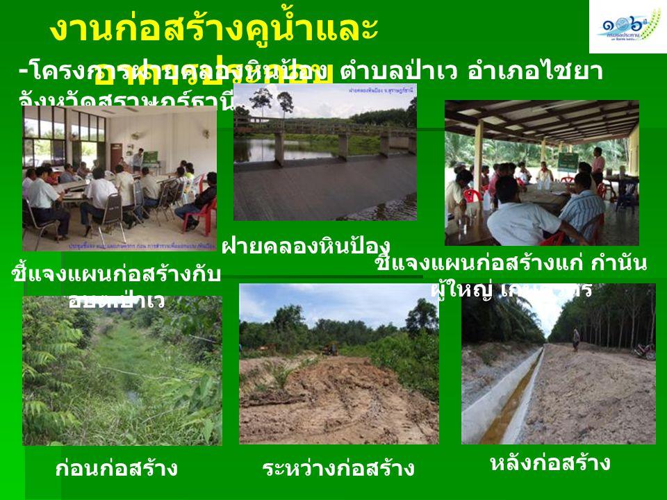 งานก่อสร้างคูน้ำและอาคารประกอบ