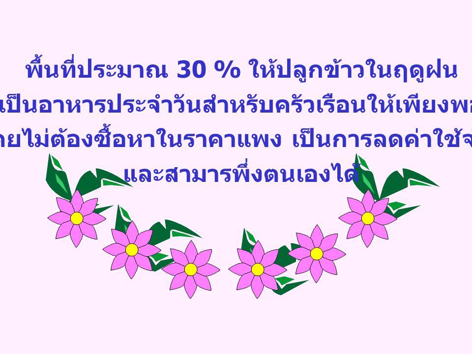 พื้นที่ประมาณ 30 % ให้ปลูกข้าวในฤดูฝน