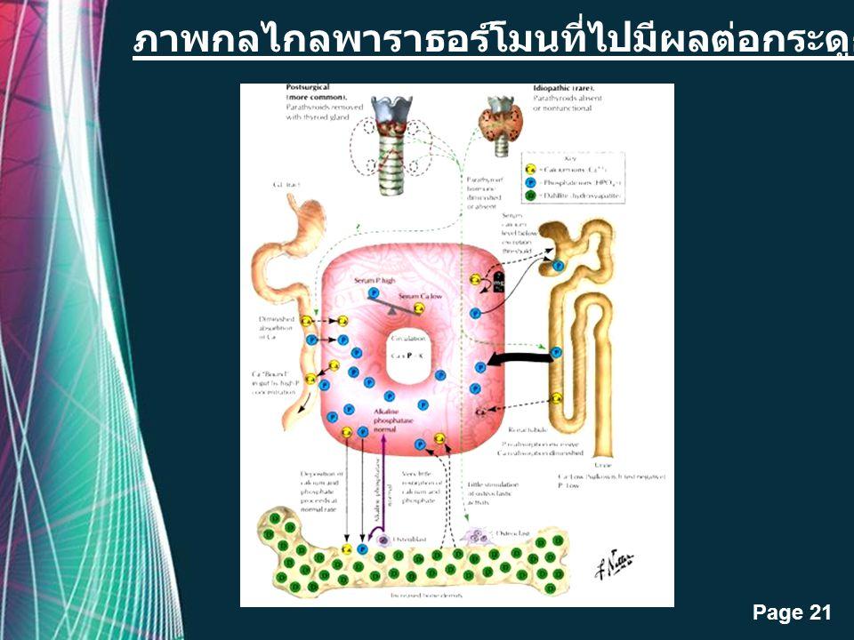 ภาพกลไกลพาราธอร์โมนที่ไปมีผลต่อกระดูก